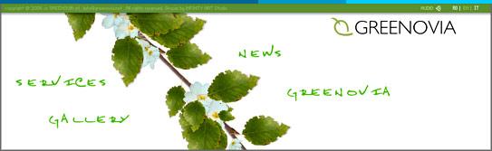 Greenovia: atmosfera web::::::